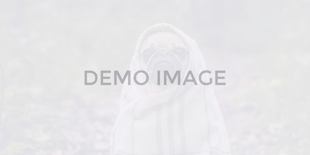 blog-dynamic_uikit