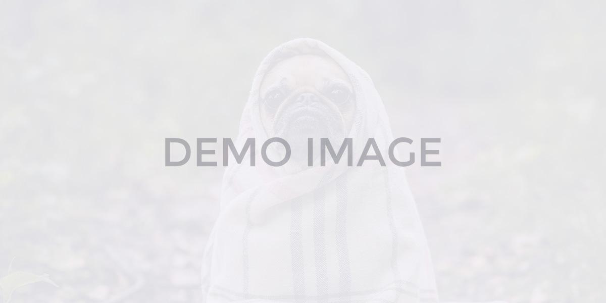blog-dynamic_warp